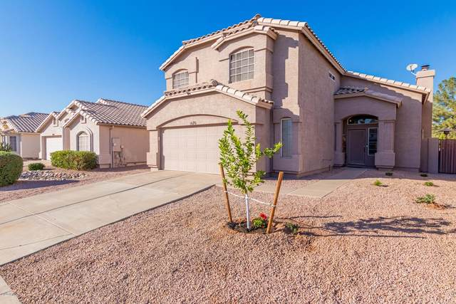 1676 W Stanford Avenue, Gilbert, AZ 85233 (MLS #6164979) :: BVO Luxury Group
