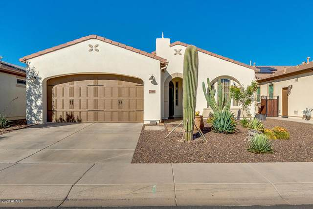 1756 E Amaranth Trail, San Tan Valley, AZ 85140 (MLS #6164996) :: TIBBS Realty