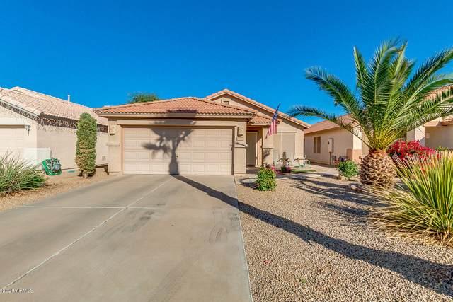 1010 E Vernoa Street, San Tan Valley, AZ 85140 (MLS #6165010) :: The Laughton Team