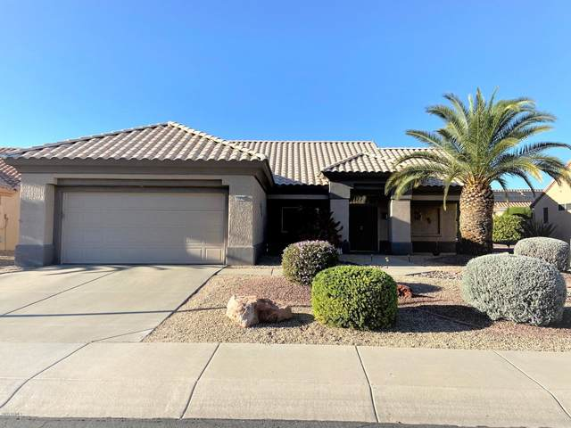 14036 W Rico Drive, Sun City West, AZ 85375 (MLS #6165015) :: Service First Realty