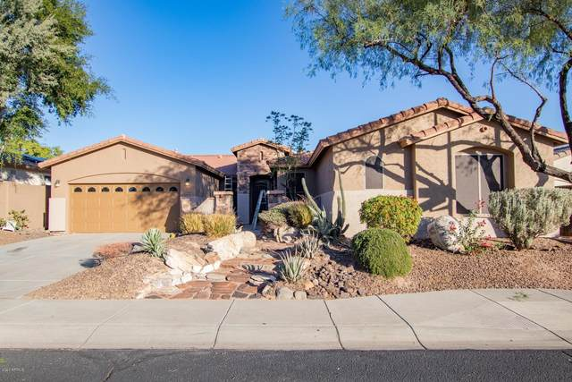 27603 N 59TH Drive, Phoenix, AZ 85083 (MLS #6165021) :: REMAX Professionals