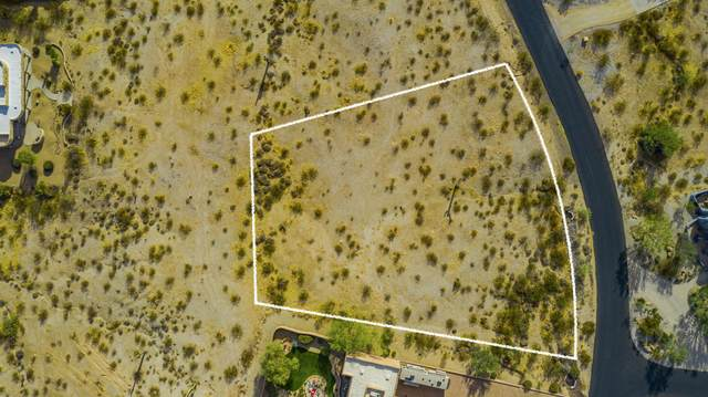 19226 W Seldon Lane, Waddell, AZ 85355 (MLS #6165062) :: The AZ Performance PLUS+ Team