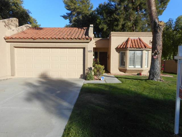 18601 N 95TH Drive, Peoria, AZ 85382 (MLS #6165101) :: The Riddle Group