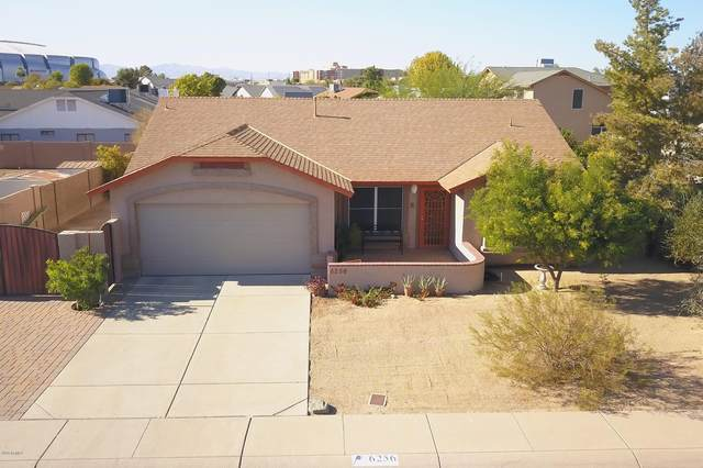 6256 N 89TH Drive, Glendale, AZ 85305 (MLS #6165106) :: The Laughton Team