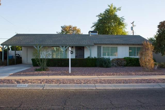 3801 W Northview Avenue, Phoenix, AZ 85051 (MLS #6165110) :: The Daniel Montez Real Estate Group