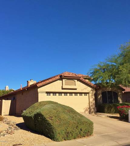 4722 E Jaeger Road, Phoenix, AZ 85050 (MLS #6165126) :: Keller Williams Realty Phoenix