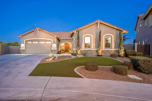 3151 S Huachuca Way, Chandler, AZ 85286 (MLS #6165130) :: Long Realty West Valley