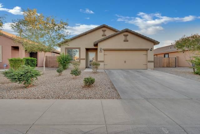 40119 W Walker Way, Maricopa, AZ 85138 (MLS #6165148) :: Keller Williams Realty Phoenix