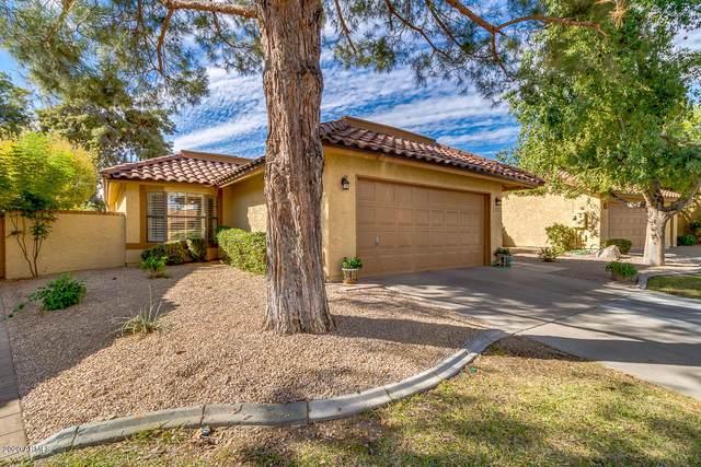 12266 S Shoshoni Drive, Phoenix, AZ 85044 (MLS #6165150) :: Keller Williams Realty Phoenix