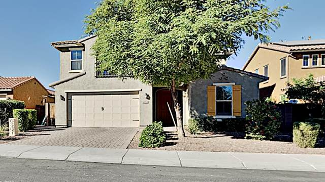 4064 S Mcminn Drive, Gilbert, AZ 85297 (MLS #6165215) :: Long Realty West Valley