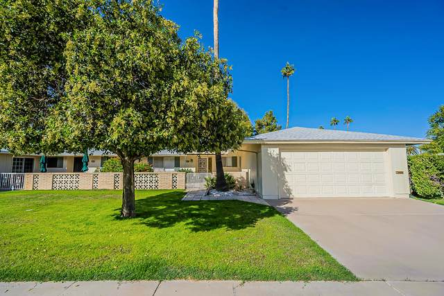 10402 W Bright Angel Circle, Sun City, AZ 85351 (MLS #6165237) :: The Daniel Montez Real Estate Group