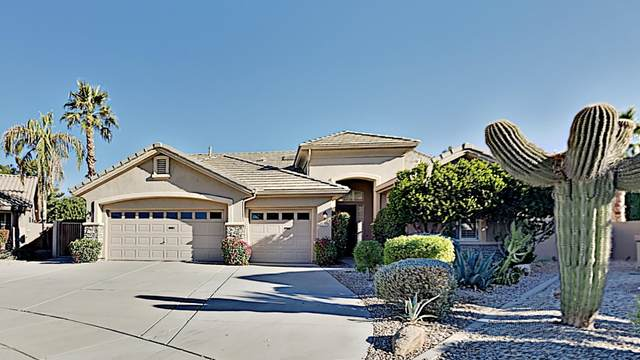 1531 S Arrowhead Drive, Chandler, AZ 85286 (MLS #6165254) :: The Daniel Montez Real Estate Group