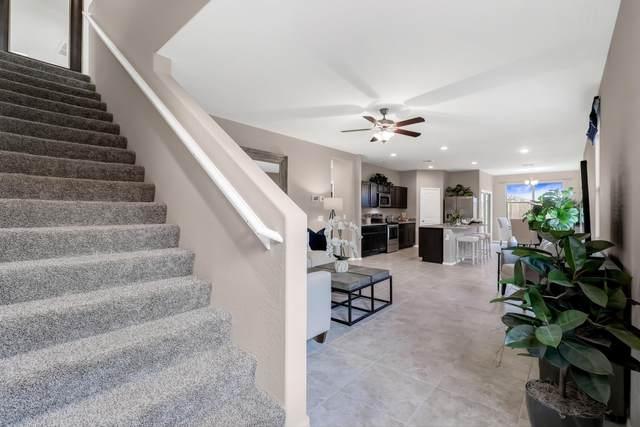 36536 W Santa Monica Avenue, Maricopa, AZ 85138 (MLS #6165261) :: Long Realty West Valley