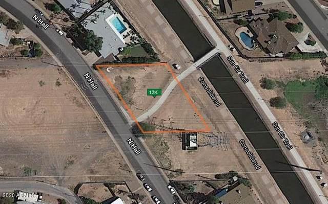 551 N Hall Road, Mesa, AZ 85203 (MLS #6165275) :: The Dobbins Team