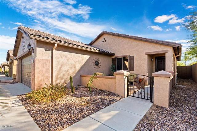 8085 W Sonoma Way, Florence, AZ 85132 (MLS #6165278) :: The Carin Nguyen Team