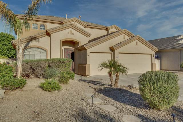 13560 W Holly Street, Goodyear, AZ 85395 (MLS #6165283) :: Long Realty West Valley