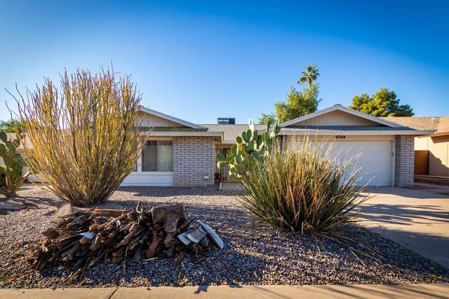 4709 E Wintu Way, Phoenix, AZ 85044 (MLS #6165315) :: Budwig Team | Realty ONE Group