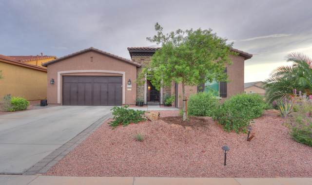 41743 W Harvest Moon Drive, Maricopa, AZ 85138 (MLS #6165331) :: Power Realty Group Model Home Center