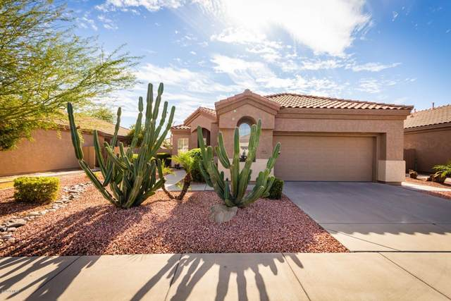 851 W Oriole Way, Chandler, AZ 85286 (MLS #6165339) :: Long Realty West Valley