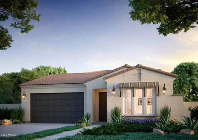 21154 W Hillcrest Boulevard, Buckeye, AZ 85396 (MLS #6165348) :: Budwig Team | Realty ONE Group