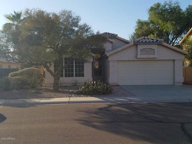 1883 W Remington Drive, Chandler, AZ 85286 (MLS #6165351) :: Long Realty West Valley