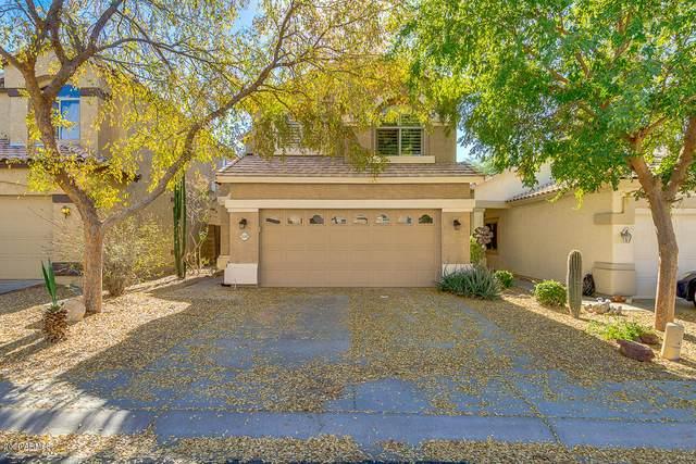 7235 E Knoll Street, Mesa, AZ 85207 (MLS #6165357) :: Brett Tanner Home Selling Team