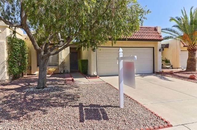 7006 E Jensen Street #165, Mesa, AZ 85207 (MLS #6165369) :: Brett Tanner Home Selling Team