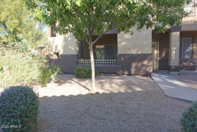 10136 E Southern Avenue #1074, Mesa, AZ 85209 (MLS #6165392) :: The Daniel Montez Real Estate Group