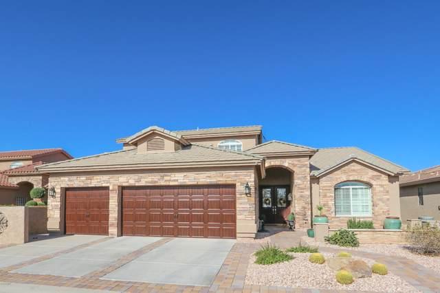 24132 S Lakeway Circle NW, Sun Lakes, AZ 85248 (MLS #6165451) :: BVO Luxury Group