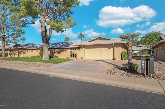12602 W Seneca Drive, Sun City West, AZ 85375 (MLS #6165457) :: The Daniel Montez Real Estate Group