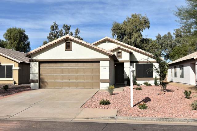 15916 W Smokey Drive, Surprise, AZ 85374 (MLS #6165497) :: The Daniel Montez Real Estate Group