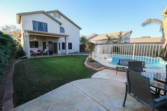 2341 N Tierra Alta Circle, Mesa, AZ 85207 (MLS #6165520) :: The Laughton Team