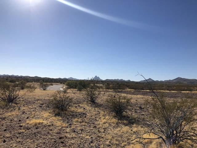965 Thunder Rock Road, Wickenburg, AZ 85390 (MLS #6165530) :: Balboa Realty