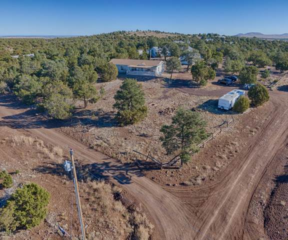 29 County Road N3133, Vernon, AZ 85940 (MLS #6165596) :: Klaus Team Real Estate Solutions