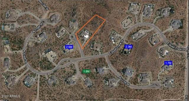 11708 E Quail Track Drive, Scottsdale, AZ 85262 (MLS #6165606) :: Long Realty West Valley