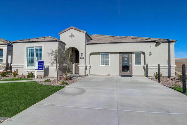 17200 N 7TH Lane, Phoenix, AZ 85023 (MLS #6165618) :: The C4 Group