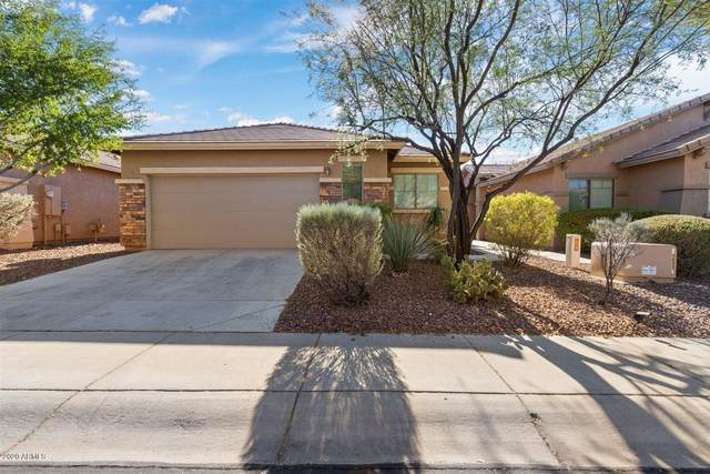 1663 W Morse Drive, Anthem, AZ 85086 (MLS #6165639) :: Long Realty West Valley