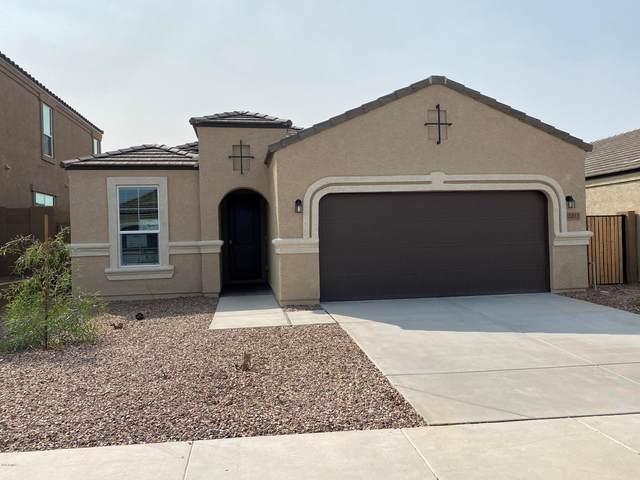 17208 N 7TH Lane, Phoenix, AZ 85023 (MLS #6165645) :: The C4 Group