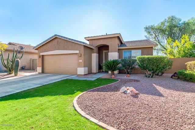 6227 W Wikieup Lane, Glendale, AZ 85308 (MLS #6165655) :: TIBBS Realty