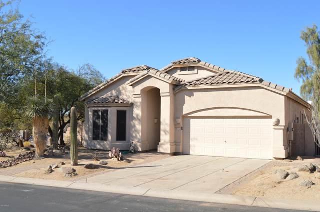 7258 E Tyndall Street, Mesa, AZ 85207 (MLS #6165696) :: Brett Tanner Home Selling Team