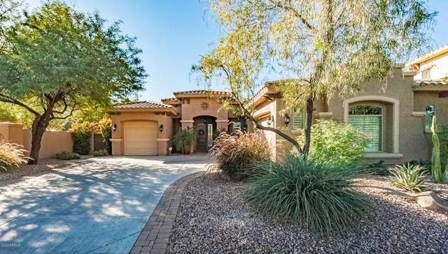 3693 E Nolan Drive, Chandler, AZ 85249 (MLS #6165733) :: Walters Realty Group