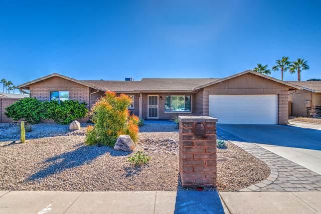 4349 E Alta Mesa Avenue, Phoenix, AZ 85044 (MLS #6165793) :: Keller Williams Realty Phoenix