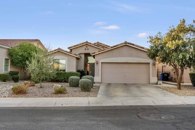 4503 E Sycamore Drive, Gilbert, AZ 85298 (MLS #6165837) :: TIBBS Realty