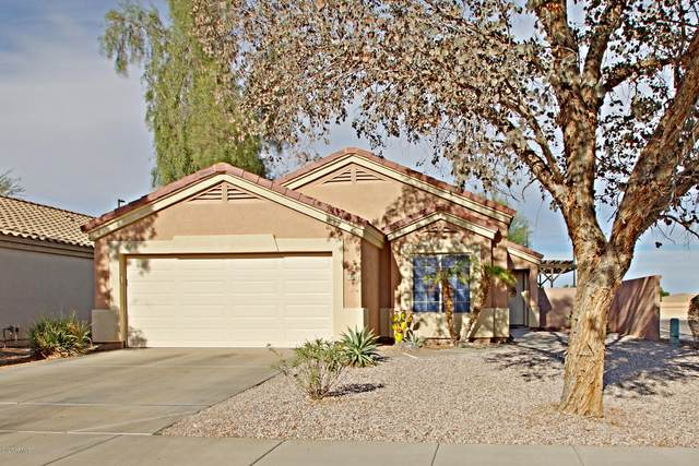 33438 N Windmill Run, Queen Creek, AZ 85142 (MLS #6165858) :: John Hogen | Realty ONE Group