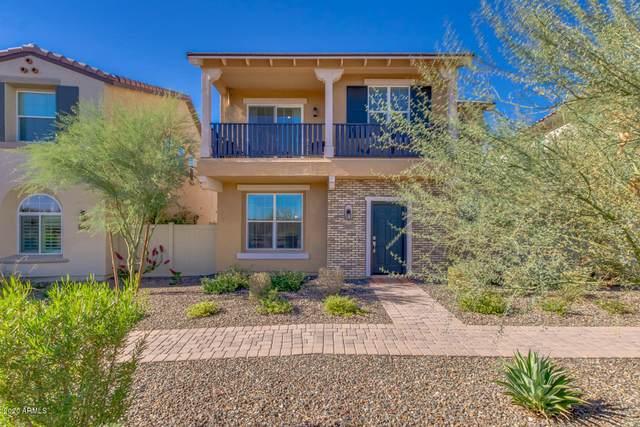 29283 N 122ND Lane, Peoria, AZ 85383 (MLS #6165885) :: The Laughton Team