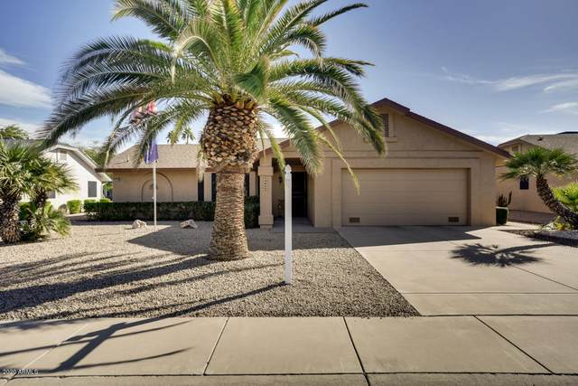 13825 W Springdale Drive, Sun City West, AZ 85375 (MLS #6165922) :: The W Group