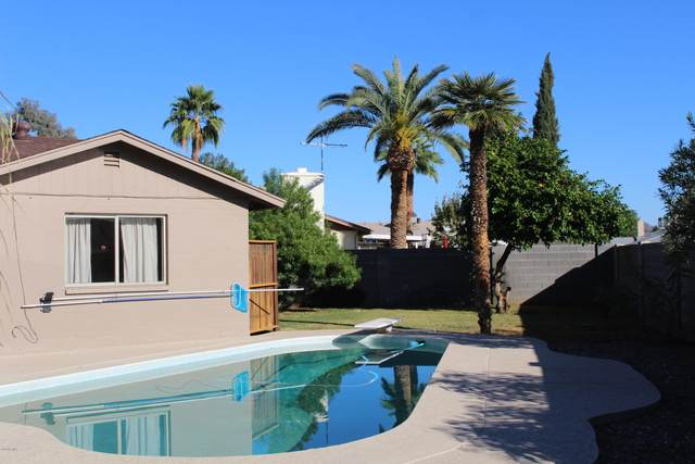 11826 N 41ST Avenue, Phoenix, AZ 85029 (MLS #6165933) :: Kepple Real Estate Group