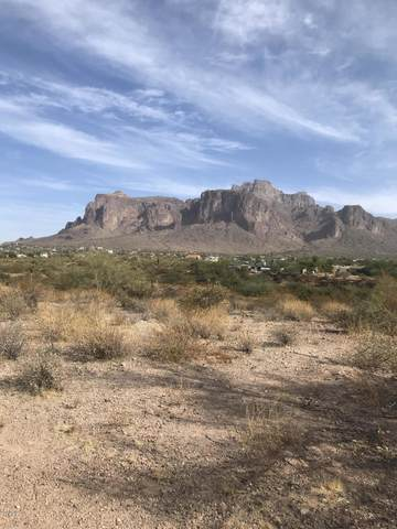 0 N Roadrunner Road, Apache Junction, AZ 85119 (MLS #6165993) :: The Helping Hands Team
