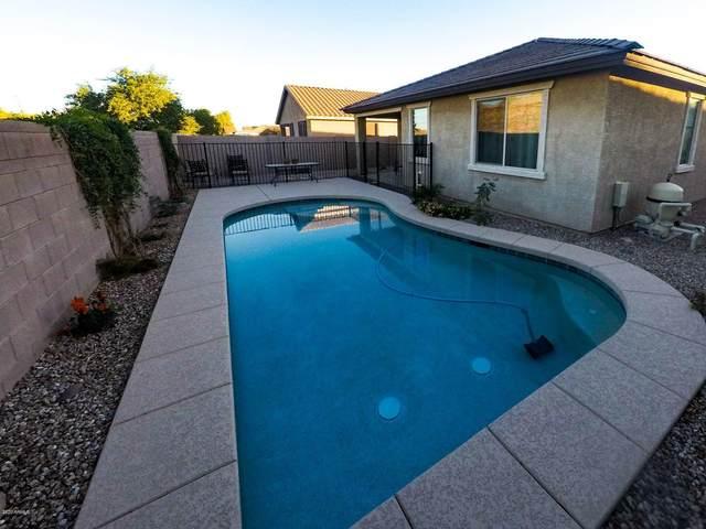33228 N Falcon Trail, Queen Creek, AZ 85142 (MLS #6166005) :: Kepple Real Estate Group