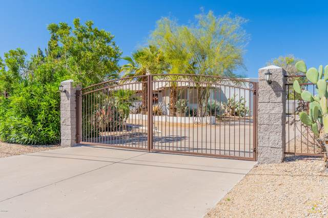 1102 E Roberts Road, Phoenix, AZ 85022 (MLS #6166021) :: Walters Realty Group